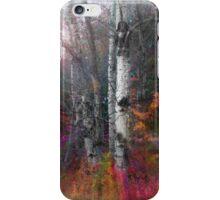 Rushing into the Rainbow Grove iPhone Case/Skin