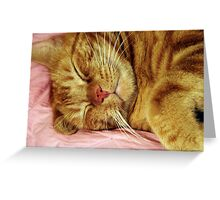 On Bended Ear Greeting Card