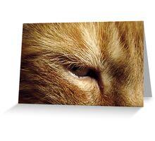 Tigger's Eye Greeting Card
