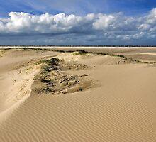 North Sea Beach 2 by Adri  Padmos