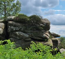 Brimham Rocks and Nidderdale by WatscapePhoto