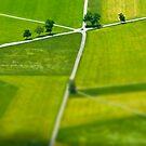 Germany. Bavaria (Bayern). Fields near Schwangau. by Alan Copson