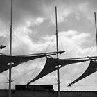 Harvester Sails by JulesPH