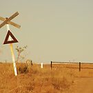 outback crossing  by andy  king