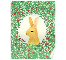Lingon bunny Poster