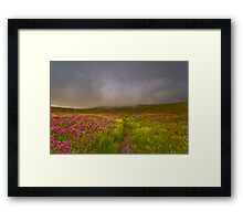 Wildflower Trail Into The Clouds Framed Print