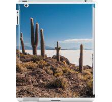 Isla del Pescado iPad Case/Skin