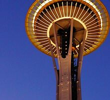 Space Needle - Night by Tamara Valjean