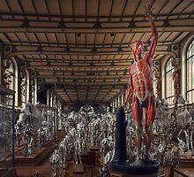 Into Extinction, Follow Me My Fellow Species by Peter Kurdulija