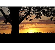 Evening's Rays Photographic Print