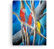 parrot oil tropical art painting print Canvas Print