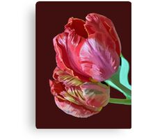 Two Red Tulips Vector Isolated Canvas Print