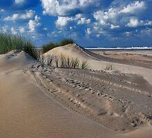 North Sea Beach 3 by Adri  Padmos