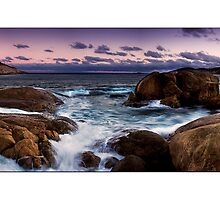 Thistle Cove by Kirk  Hille