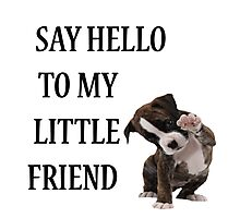 Say Hello to My Little Friend Photographic Print