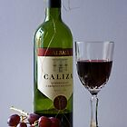 From Grape to Glass by Pauline Rumsey