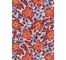 Coral Summer - a hand drawn floral pattern Photographic Print