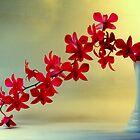 Ikebana-1 by Hiroshi  Maeshiro