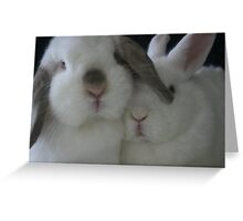 Lilly and Qtip Greeting Card