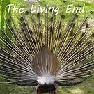 The Living End by Lanis Rossi