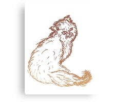 Persian Cat Sketch 2 Canvas Print