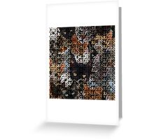 Cats and Cats and Greeting Card