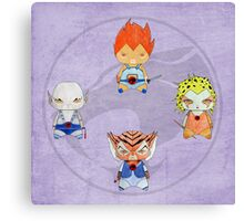 A Boy / A Girl - Thundercats Canvas Print