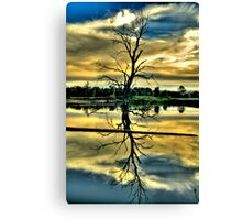 Meditation - Wonga Wetlands , Albury NSW - The HDR Experience Canvas Print