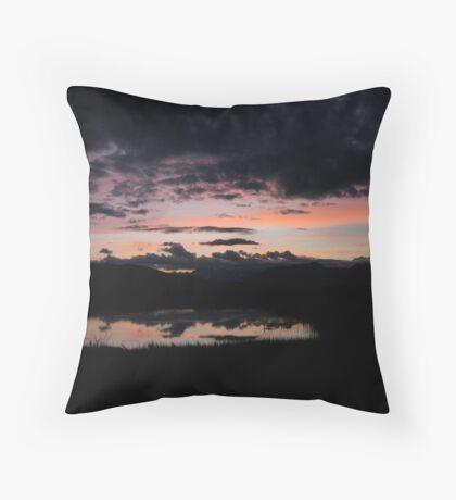 Swan Lake Pastels Throw Pillow