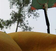 Flatsketball by BLAMB
