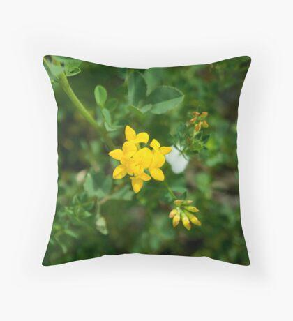 Birdsfoot Trefoil (Lotus corniculatus) Throw Pillow