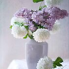 Lilacs and hydrangeas by SylviaCook