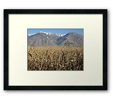Provo Utah plains Framed Print