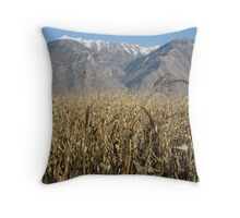 Provo Utah plains Throw Pillow