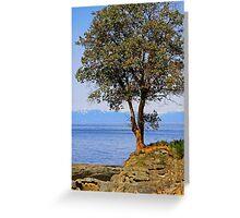Arbutus Tree Greeting Card