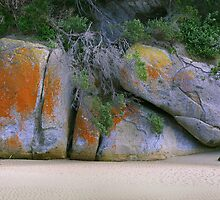 Tidal river rocks by Hans Kawitzki