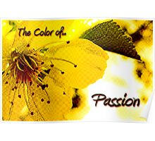 Yellow Passion Poster