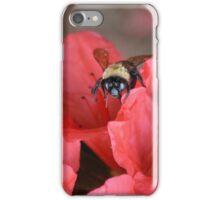 Bumble Bee  On Red Azalea iPhone Case/Skin