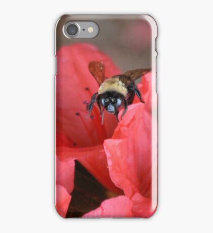 Bumble Bee  On Red Azalea iPhone Case/Skin