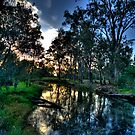 Solitude - Wonga Wetlands,Albury NSW- The HDR Experience by Philip Johnson