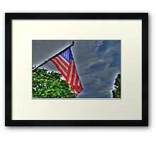 I pledge allegiance... Framed Print