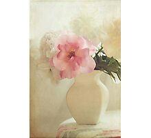 Rose and peonies Photographic Print