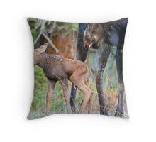 Moose Cow, Days Old Calf, Looking Good Throw Pillow