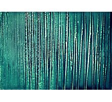 chris - structure artworks - two Photographic Print