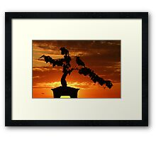 Zen Sunset Framed Print