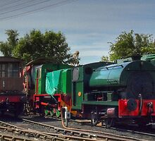 Northampton and Lamport Railway by SimplyScene