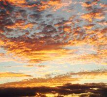 Beautiful sunset in Hawaii  Sticker