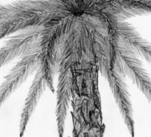 Elegant Palm Tree Sketch Sticker