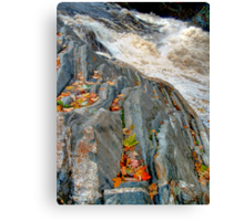 Maple Leaves at Livermore Falls Canvas Print