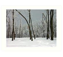 Crystallized trees in snowy Dobogókő, Hungary Art Print
